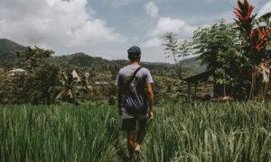 bali digital nomads