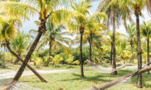 bahamas for digital nomads